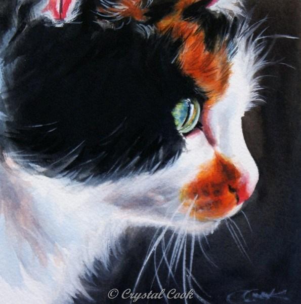 """Kitty Windows"" original fine art by Crystal Cook"