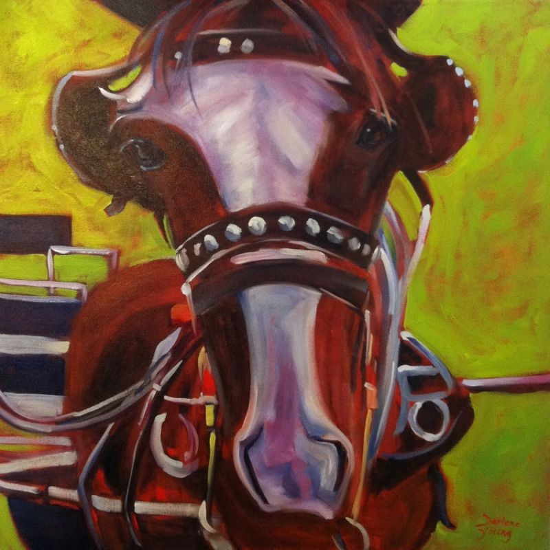 """""""Sarge, Clydesdale Horse, 24x24 oil on canvas"""" original fine art by Darlene Young"""