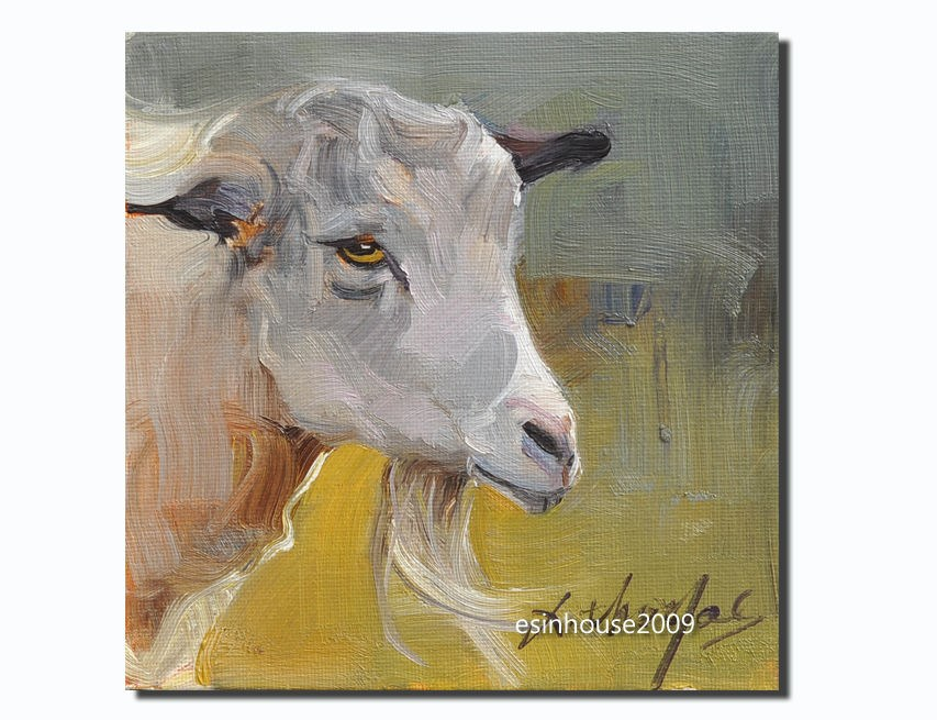 """The goat Sheep portrait Original oil Painting on canvas panel Farm animals 6X6"" original fine art by Thomas Xie"