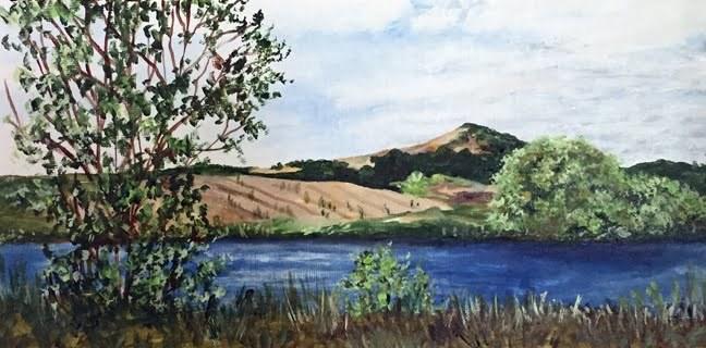 """""""Napa Valley"""" original fine art by Nan Johnson"""