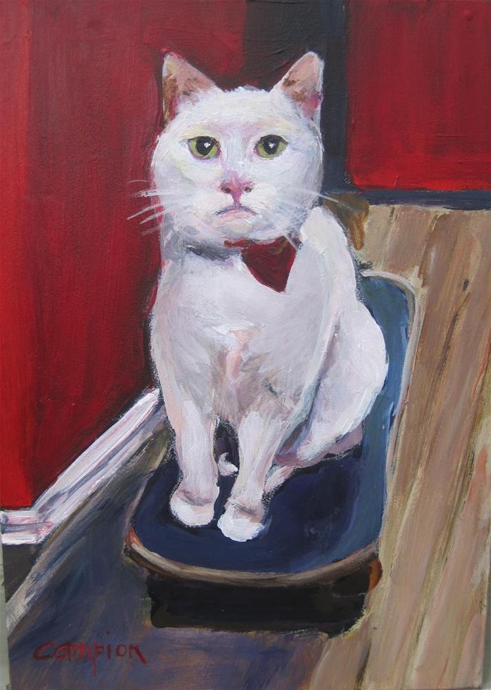 """Extreme Kitty"" original fine art by Diane Campion"