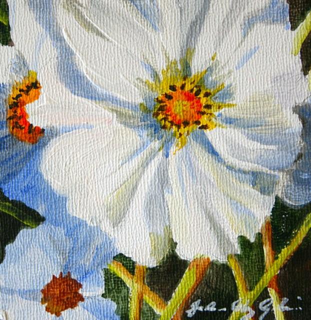 """""""Winter Flower"""" original fine art by JoAnne Perez Robinson"""