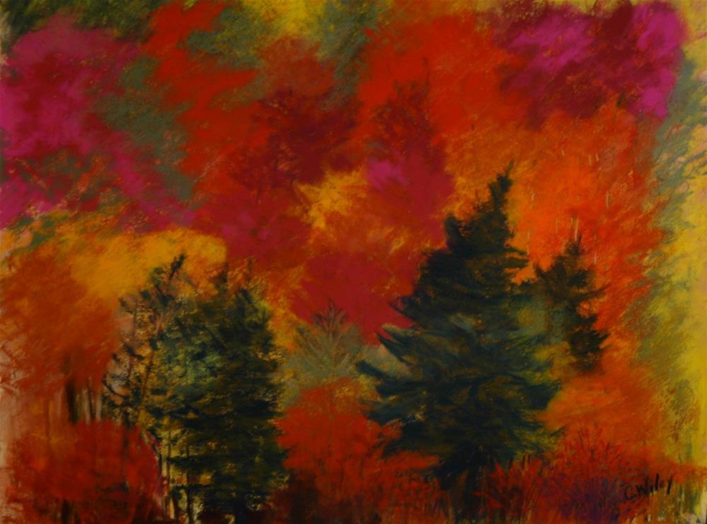 """""""Rainbow Hill"""" original fine art by Carol Wiley"""