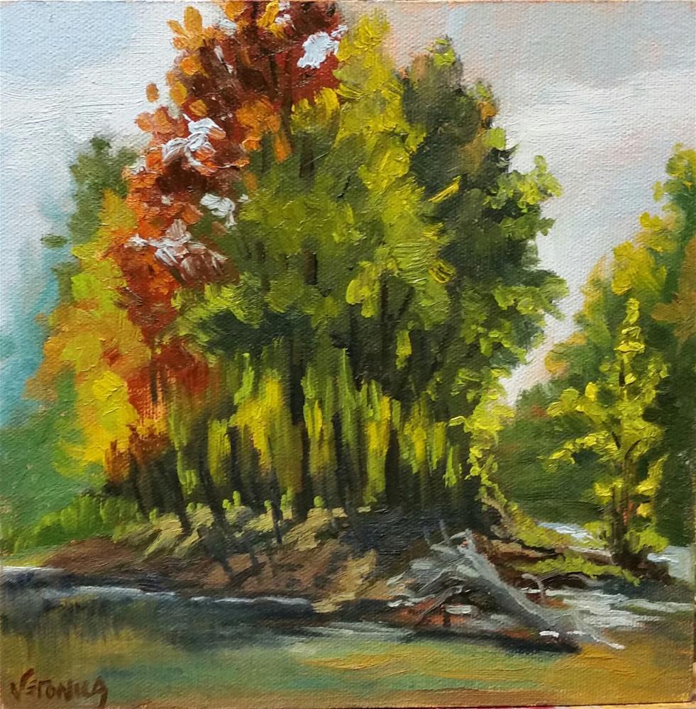 """Backlit Island-en plein air"" original fine art by Veronica Brown"