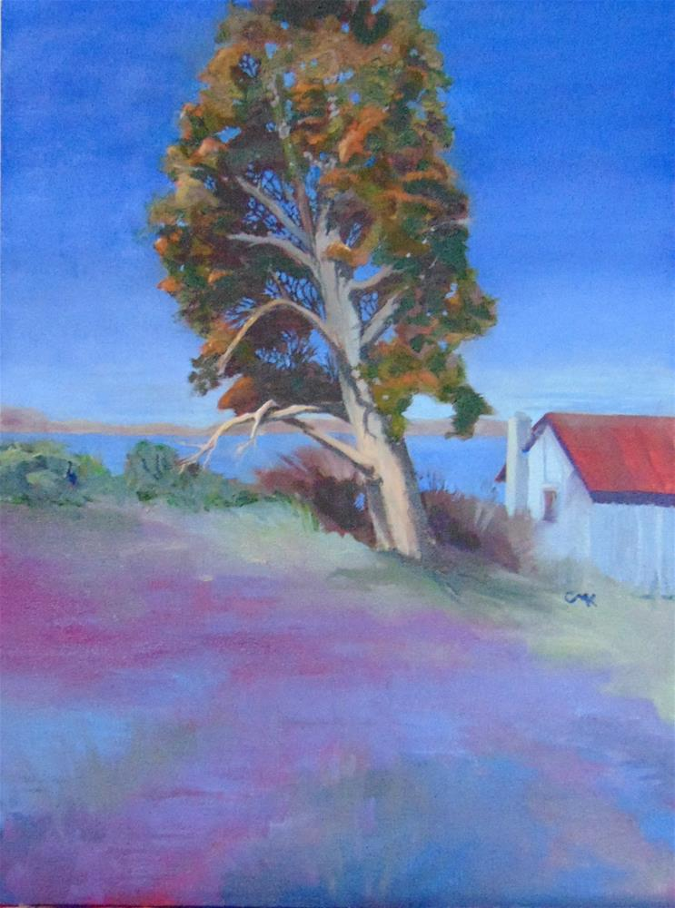 """Cedar Tree"" original fine art by Catherine Kauffman"