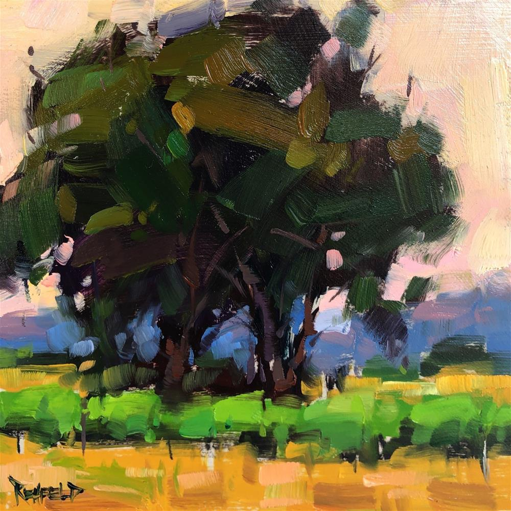"""Vineyard Oak Trees"" original fine art by Cathleen Rehfeld"
