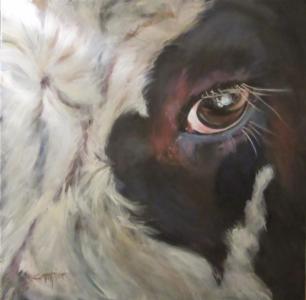 """508 Revisiting Bob the Bull"" original fine art by Diane Campion"
