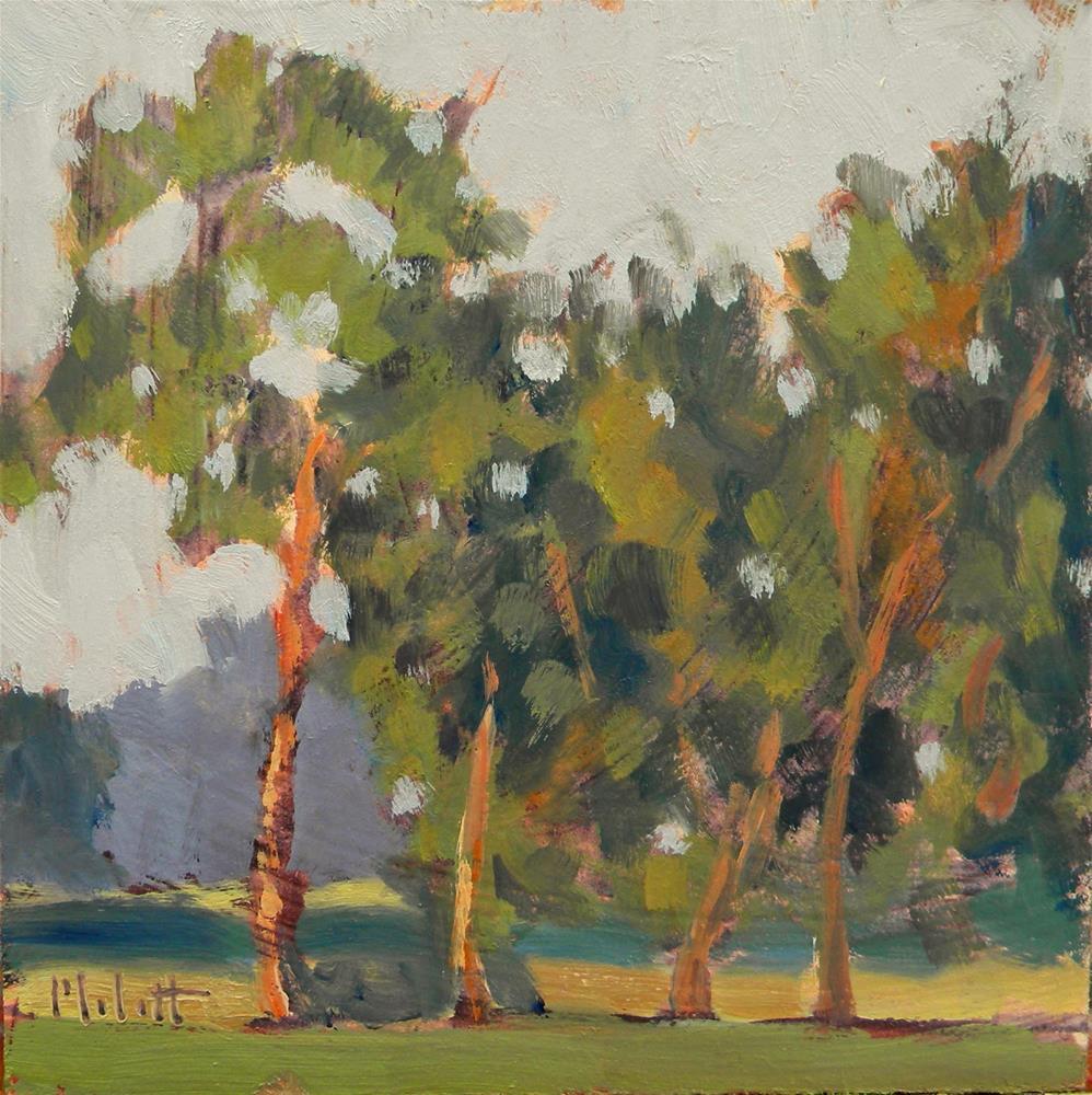 """Tree Line in the Golden Sun Original Oil Paintings"" original fine art by Heidi Malott"