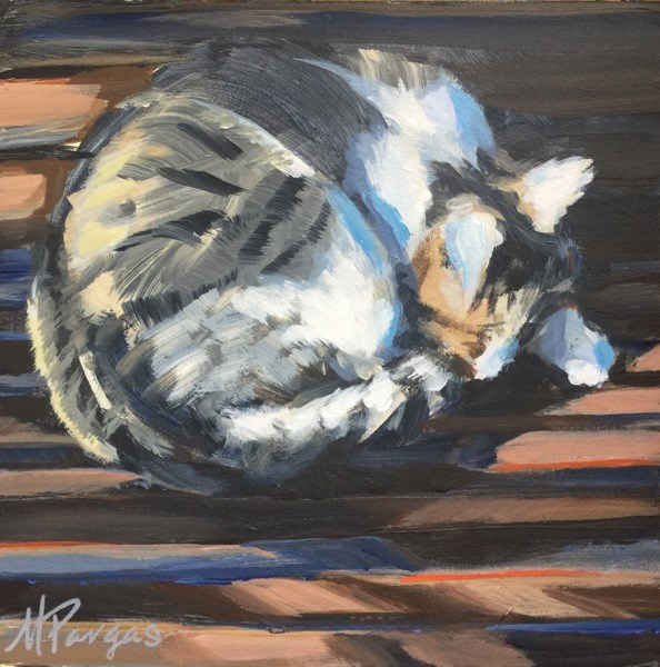 """Cat Nap in Dappled Sunlight"" original fine art by Mary Pargas"