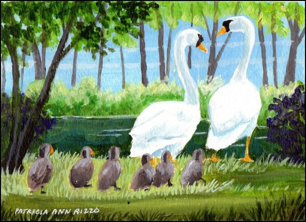 """Swans and Signets 2"" original fine art by Patricia Ann Rizzo"