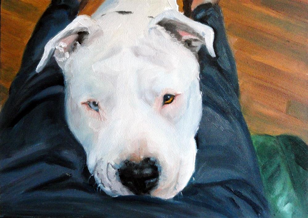 """Lap Dog"" original fine art by Cietha Wilson"
