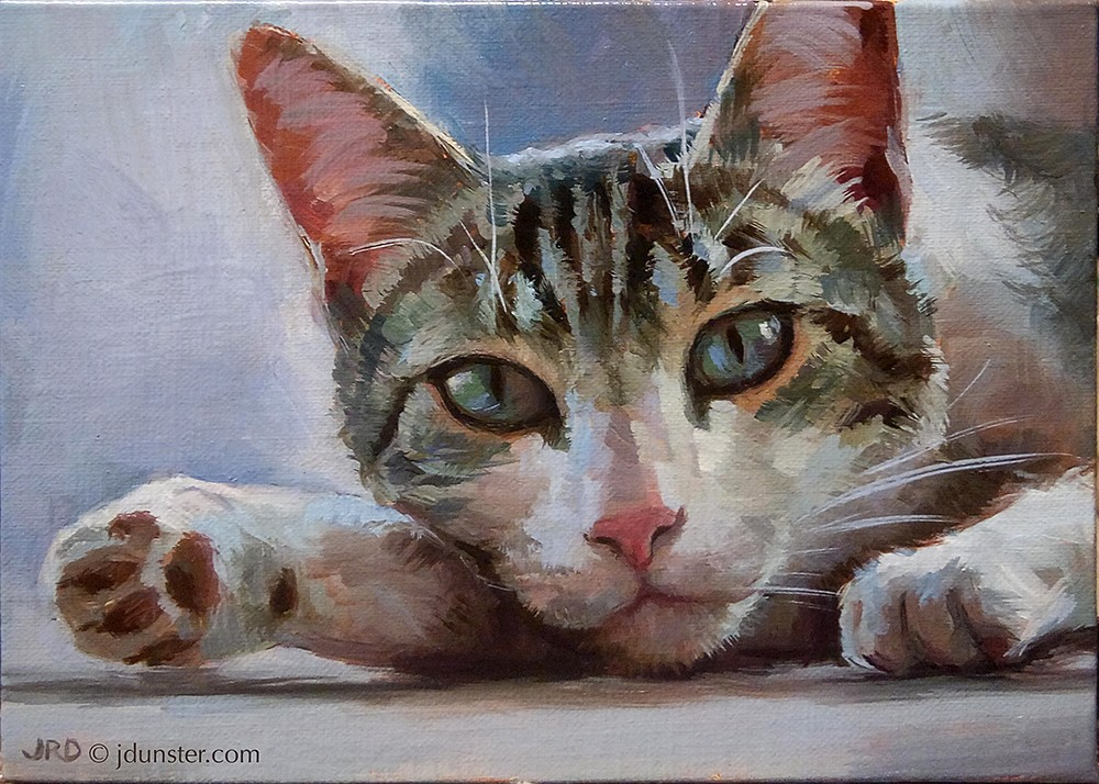 """Tabby Jelly Beans"" original fine art by J. Dunster"
