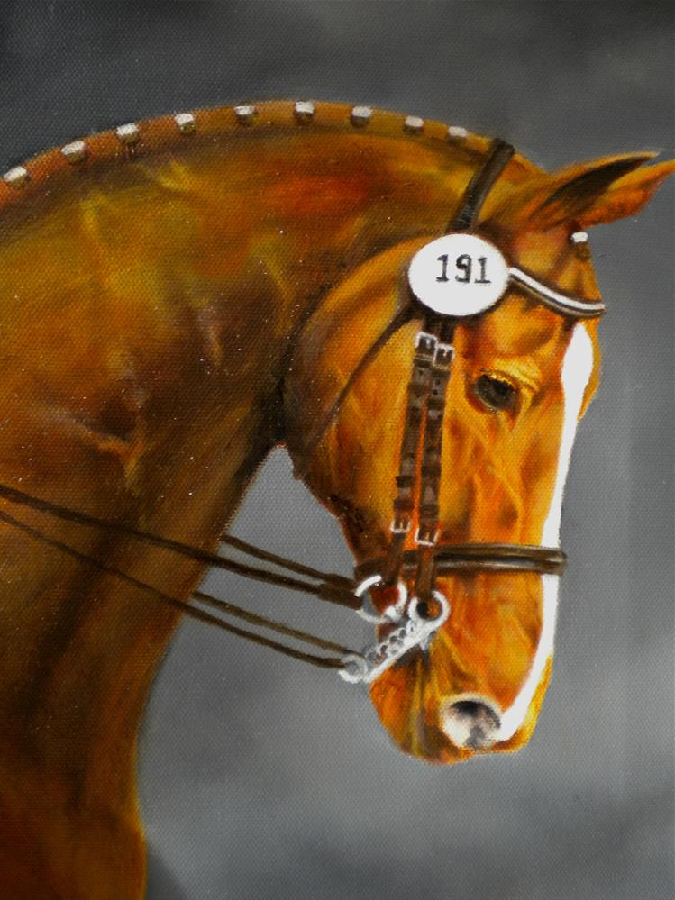 """Equine portrait Oil"" original fine art by Hilarie Johnson"