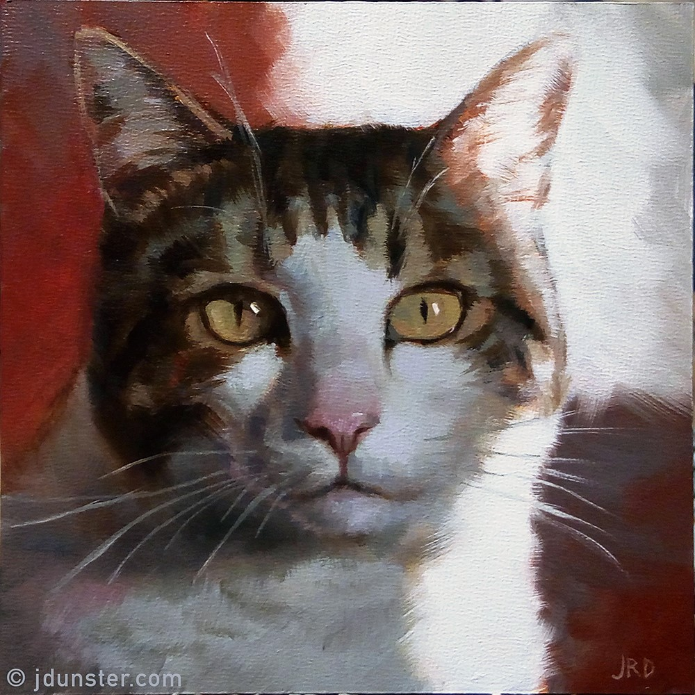 """Band of Light (Cat Portrait)"" original fine art by J. Dunster"