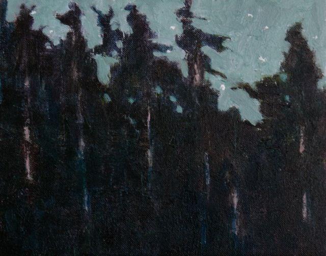 """""""Forest Lights"""" original fine art by Susan Hammer"""