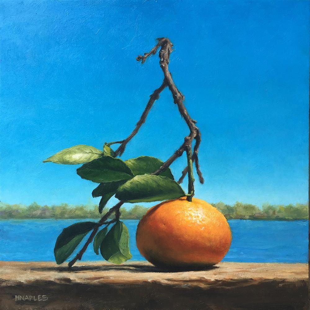 """""""Sun-Drenched Orange"""" original fine art by Michael Naples"""