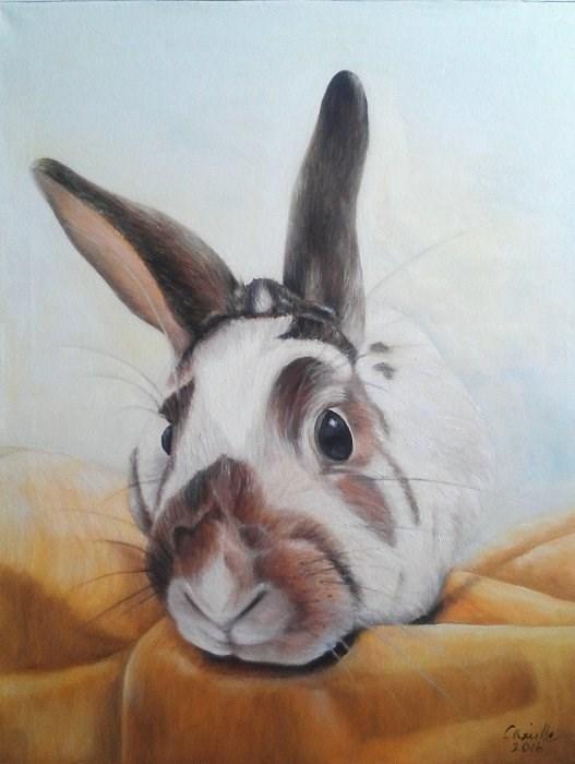 """""""Bunny Portrait"""" original fine art by Camille Morgan"""