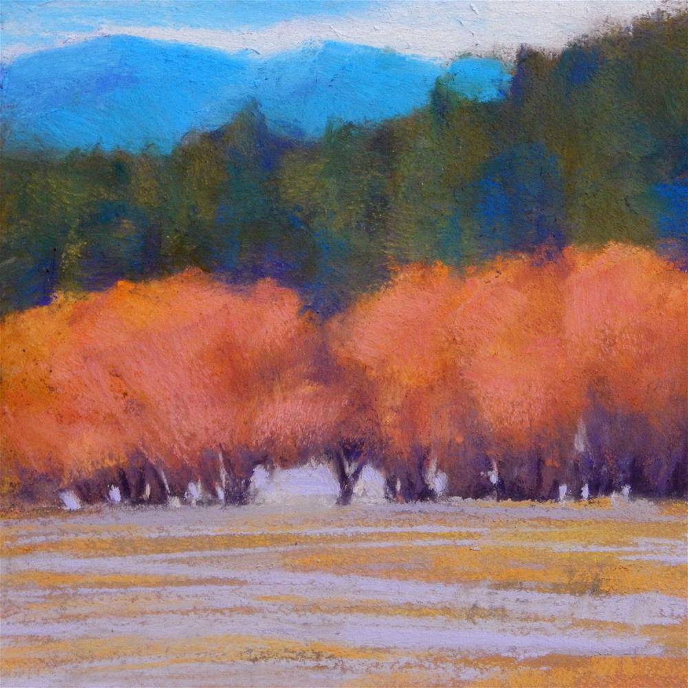 """""""Trees Near Elliston"""" original fine art by Carolyn Caldwell"""