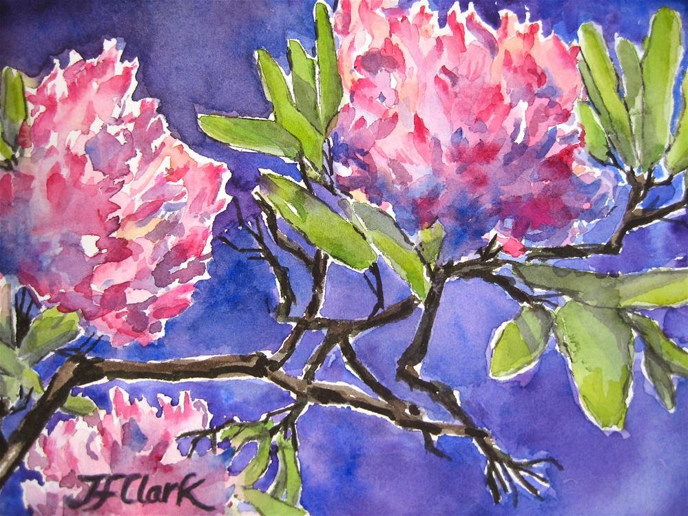 """Rhododendron sketch #1"" original fine art by Judith Freeman Clark"