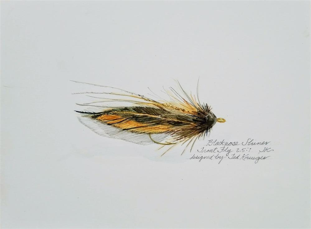 """Blacknose Shiner - Trout Fly"" original fine art by Jean Krueger"