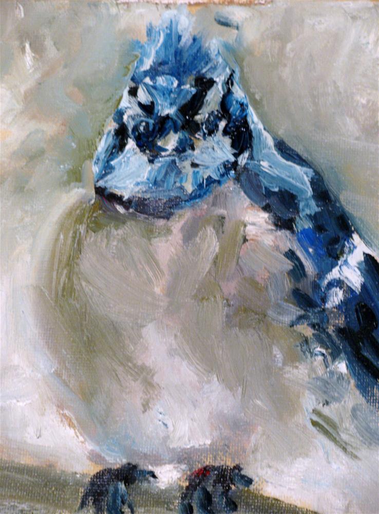 """""""Blue Jay in Winter"""" original fine art by Susan Elizabeth Jones"""