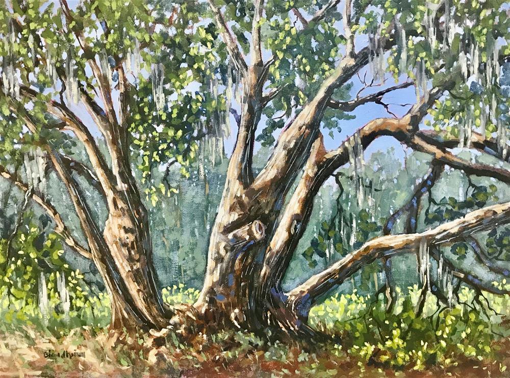 """Serenity Oak"" original fine art by Linda Blondheim"