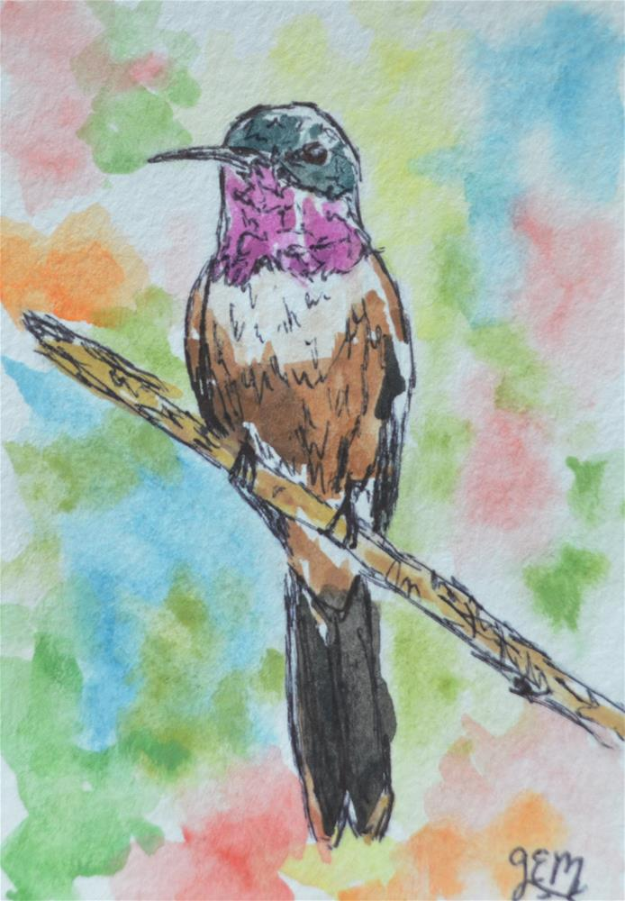 """Hummingbird Watercolor ACEO"" original fine art by Gloria Ester"