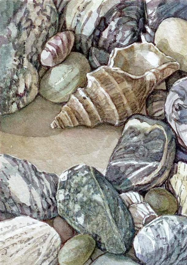 """Beaches:Small Treasure (framed)"" original fine art by Nicoletta Baumeister"