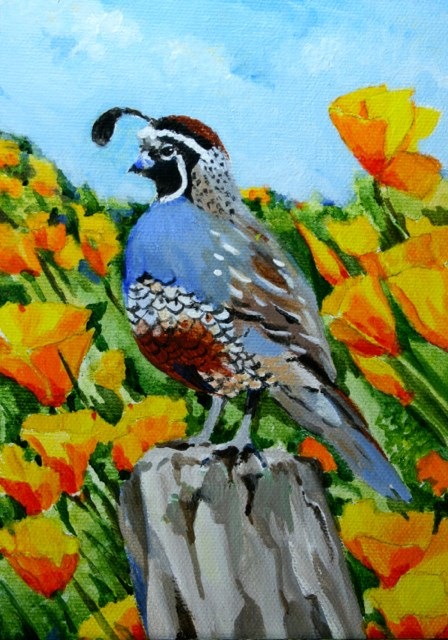 """Quail + Poppies = California"" original fine art by JoAnne Perez Robinson"