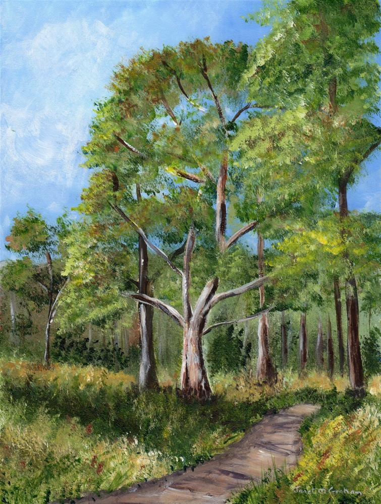 """Bush Walk"" original fine art by Janet Graham"