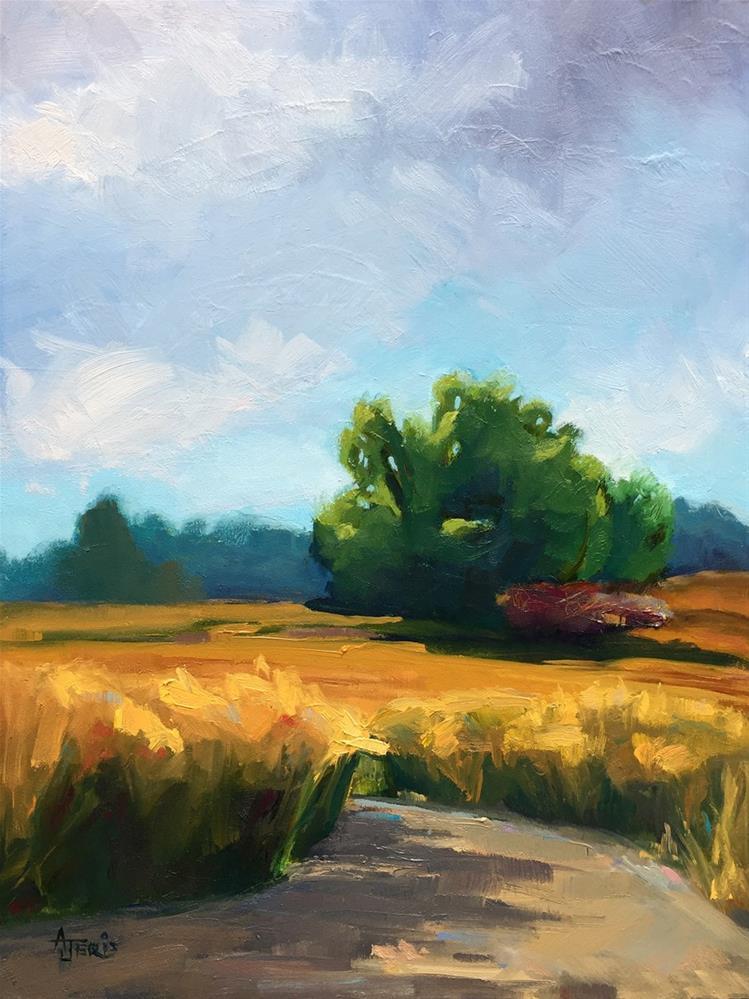 """Nature Trail"" original fine art by Andrea Jeris"