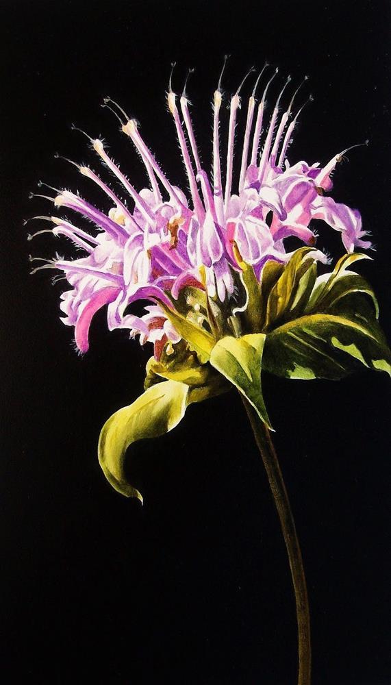"""Bee Balm"" original fine art by Jacqueline Gnott, TWSA, WHS"