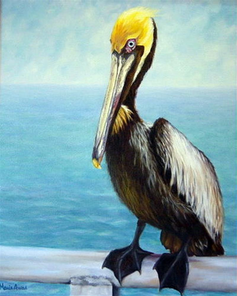 """Pelican On Guard"" original fine art by Maria Levandowski"