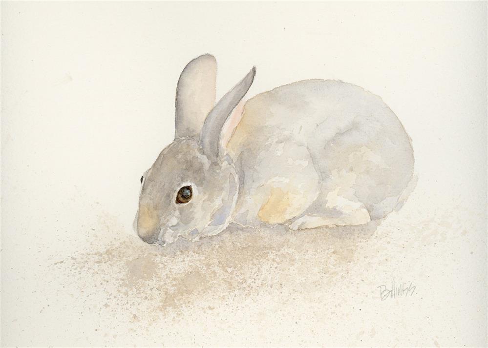 """Cottontail Study III"" original fine art by Susanne Billings"