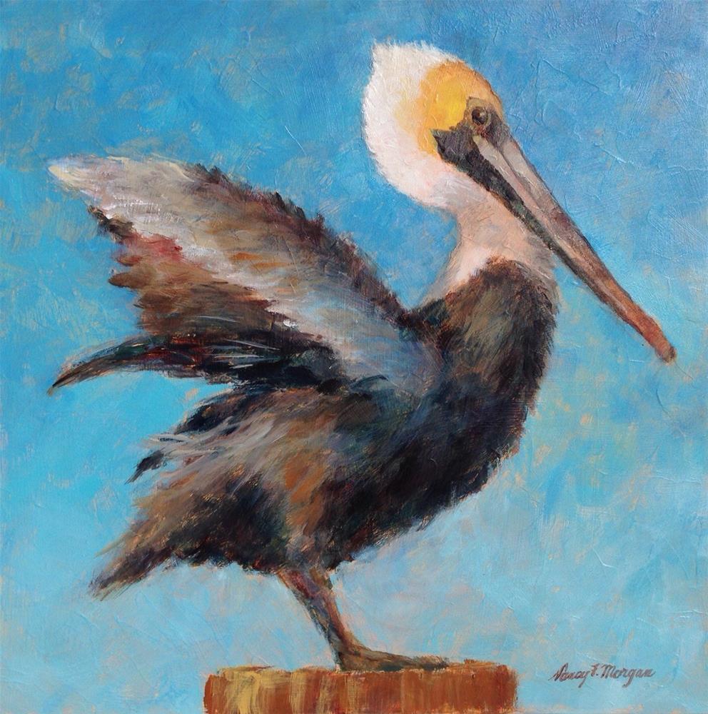 """Proud Pelican"" original fine art by Nancy F. Morgan"