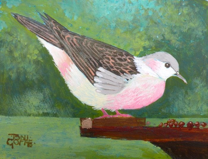 """""""Turtle Dove"""" original fine art by Toni Goffe"""