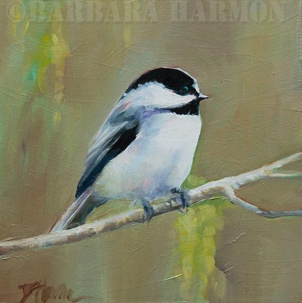 """Chubby Chickadee"" original fine art by Barbara Harmon"