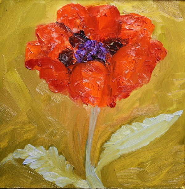 """Another Poppy"" original fine art by Jane Frederick"