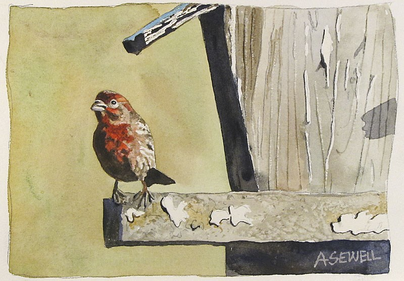 """""""F is for Finch"""" original fine art by Andy Sewell"""