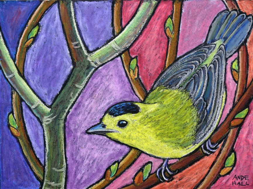 """Wilson's Warbler"" original fine art by Ande Hall"