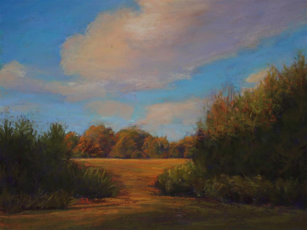 """Through Borders Wild"" original fine art by Sharon Lewis"