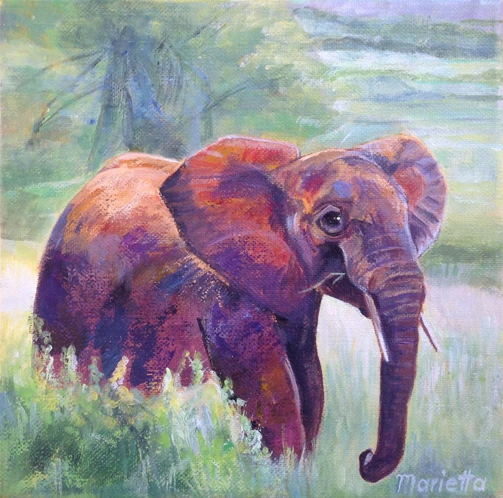 """Elephant"" original fine art by Marietta Modl"