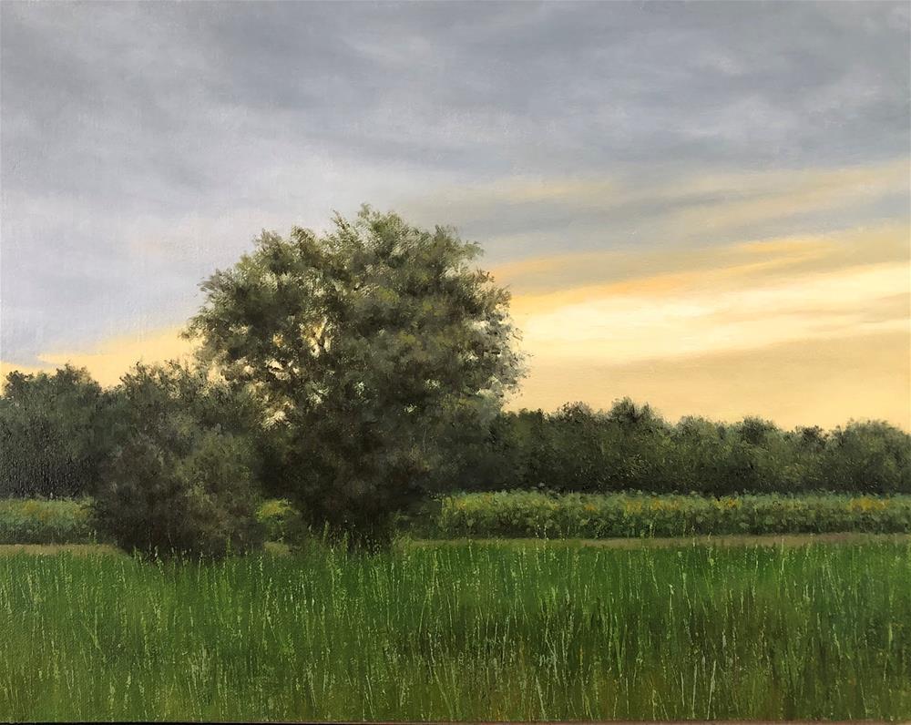 """Landscape at Sunset (Verrill Farm)"" original fine art by Michelle Garro"