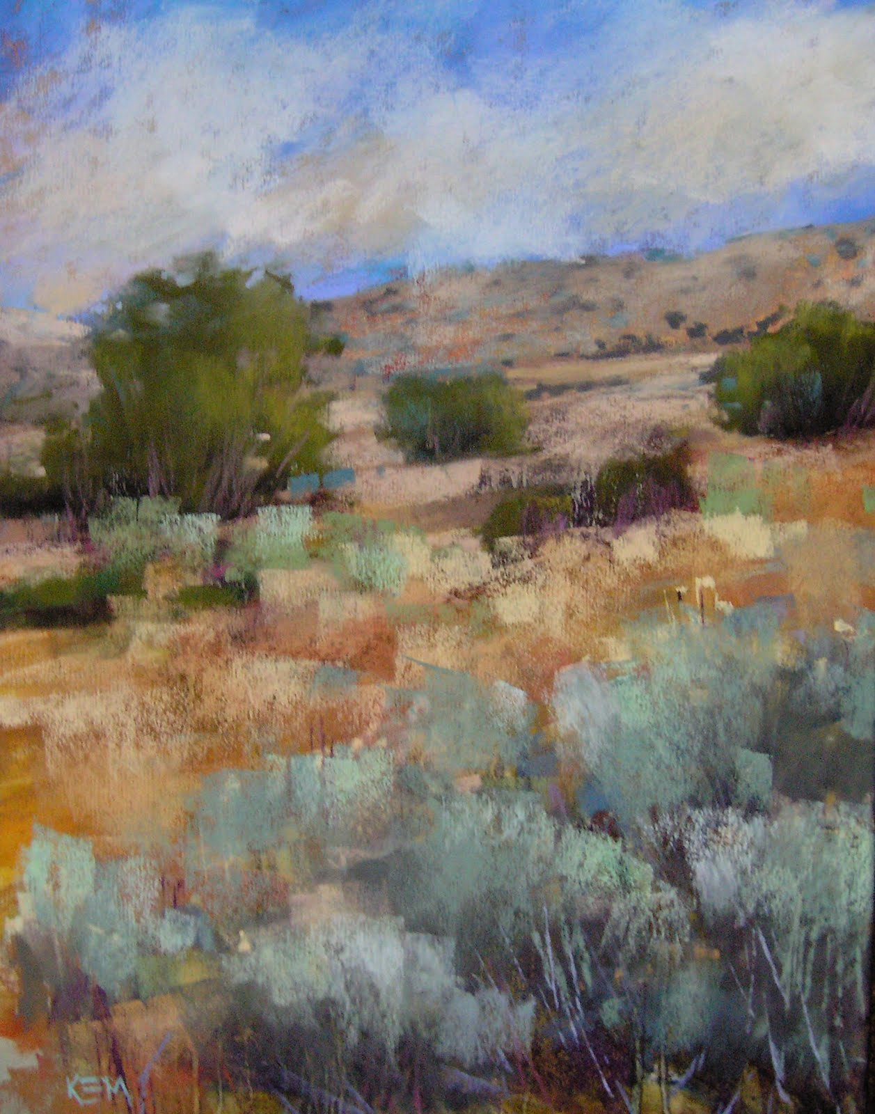 """Desert Dreams II New Mexico"" original fine art by Karen Margulis"
