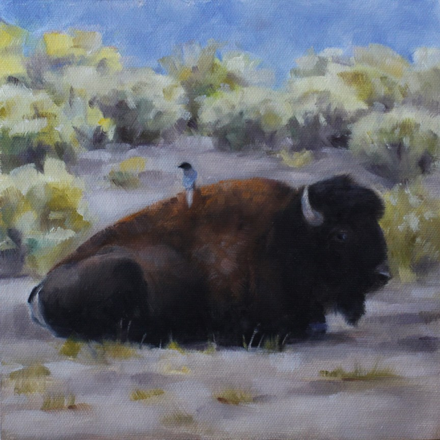 """Bison and Magpie"" original fine art by Pamela Poll"