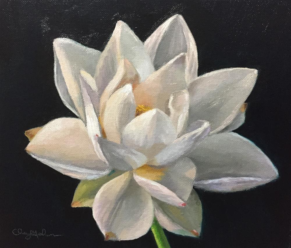 """White Lotus"" original fine art by Cheryl Meehan"