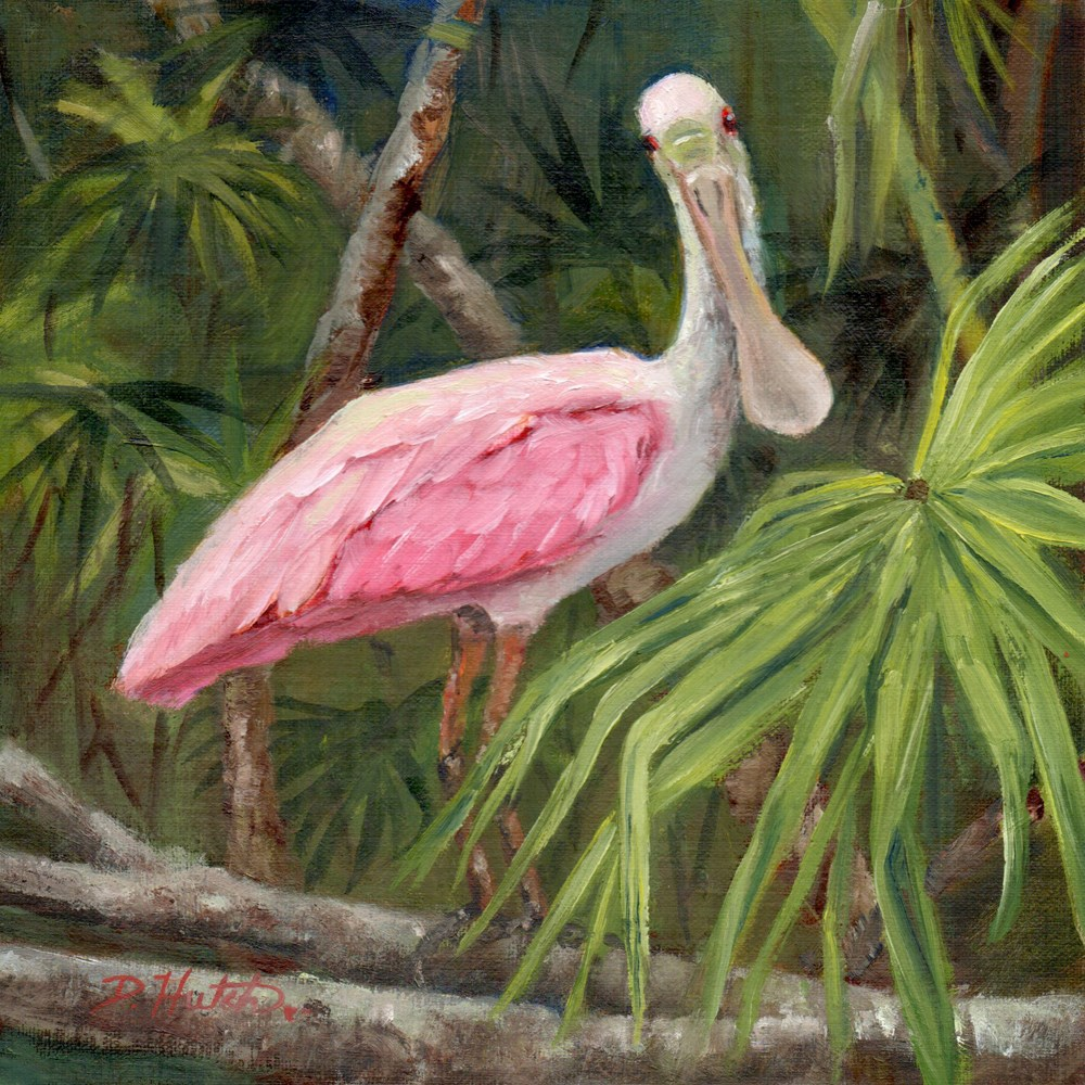 """Roseate Spoonbill #1"" original fine art by Diane Hutchinson"