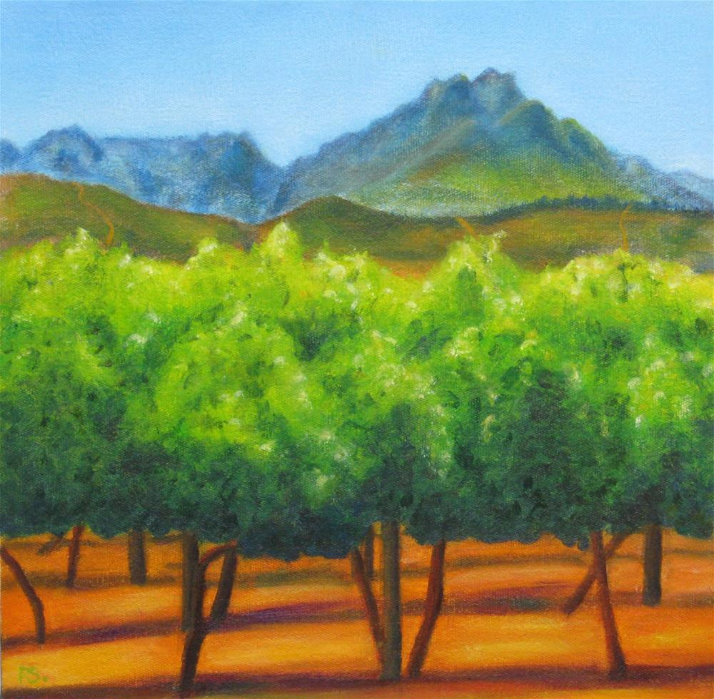 """Magical Stellenbosch I"" original fine art by Pera Schillings"