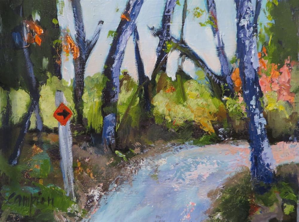 """855 Around the Bend, Sunset Trail, Peninsula State Park"" original fine art by Diane Campion"