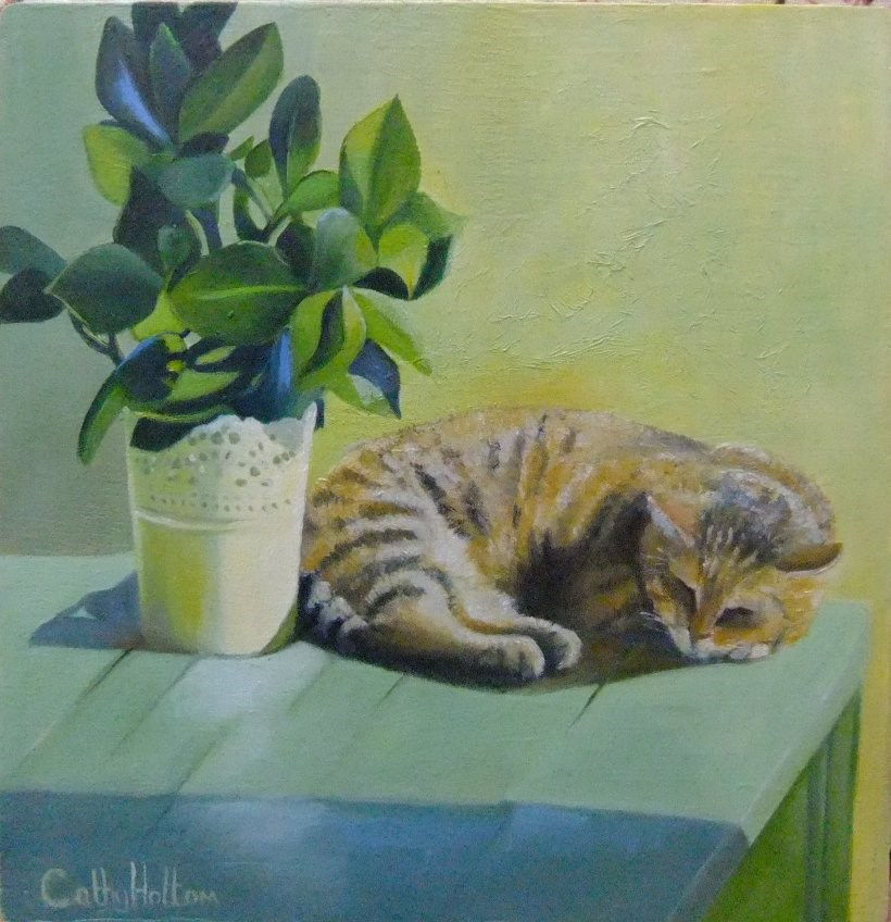 """Cat in the Sun"" original fine art by Cathy Holtom"